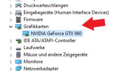 Windows 10: Welche Grafikkarte habe ich?