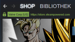Valve Steam Gaming Shop Client