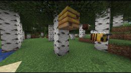 Minecraft 1.15 Bienen Bee Neuerungen Update